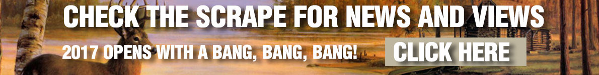 scape-banner2018